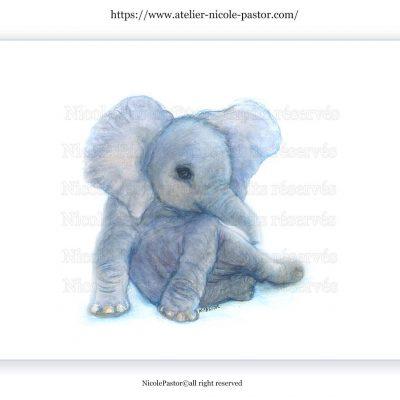 olifant-bebe-elephant-1