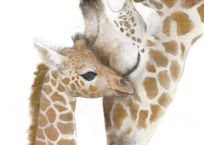girafe FILIGRANE