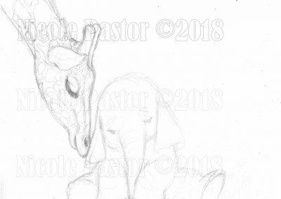 olifant-girafe